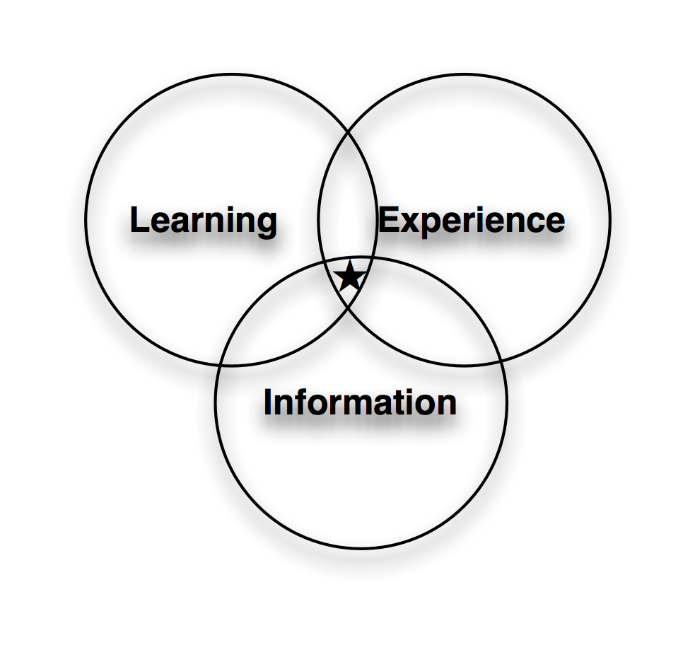 Learning/Information/Experience Design